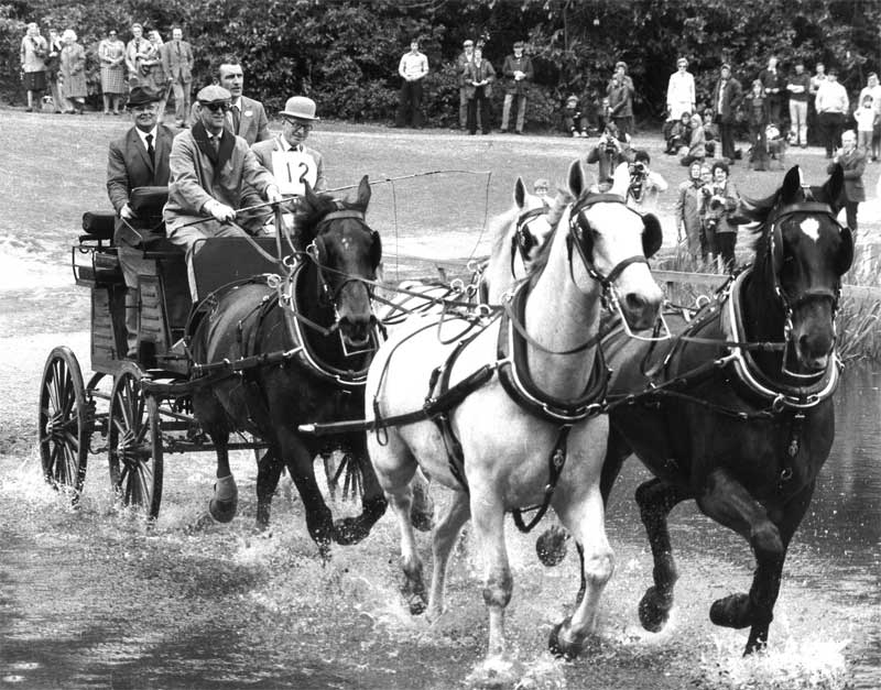 Prince Philip in action during his carriage driving heyday.
