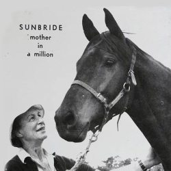 A clipping of Nancy Williams and Sunbride. Photo: Supplied/NZ Thoroughbred Marketing