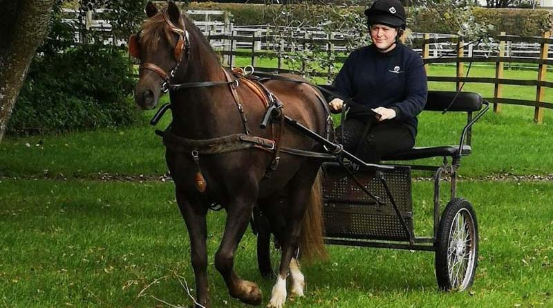 George -- Ted to his friends -- has won a national carriage driving award.
