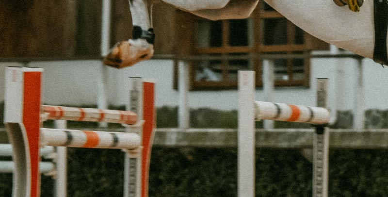 A 10-year suspension has been imposed on a United States showjumping rider found to have been using electric spurs on horses.