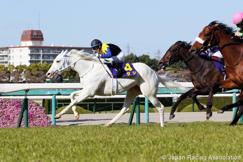 Sodashi holds off Satono Reinas and Fine Rouge to win the 1600m turf Oka Sho (Japanese 1000 Guineas) on Sunday.