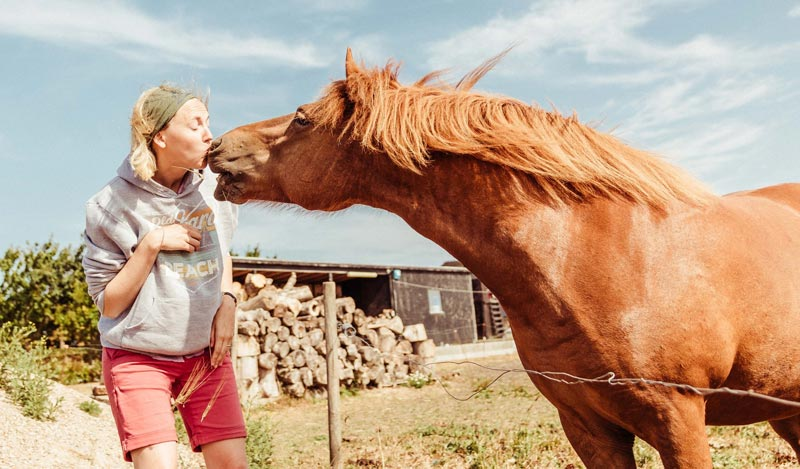 Those affected by the pandemic in other areas of their lives, such as being stood down from work, emphasised the importance of their horses as a source of emotional support at that time.