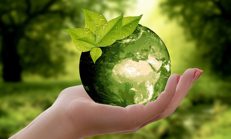BEVA has achieved bronze level accreditation from Investors in the Environment (iiE). It marks the first officially recognised step for the association on their sustainability journey.