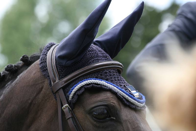 The quarantine put in place by British Equestrian in March has been lifted.
