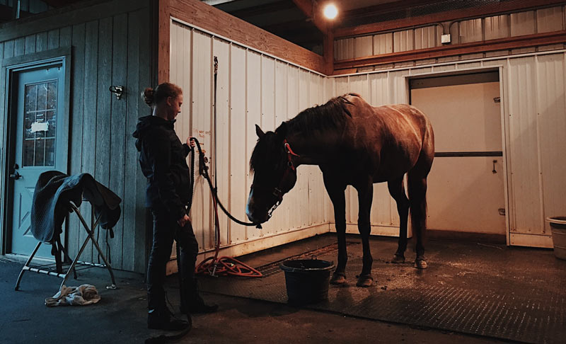 Many owners and managers described feeling under pressure to also navigate the emotional and mental health of their livery clients, by allowing them to spend time at the yard.