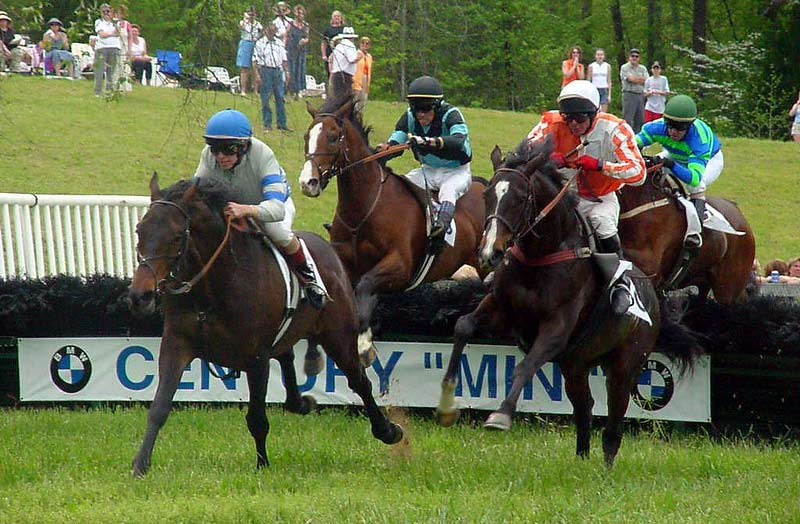 Increased time in training significantly increases the chances of jumps horses experiencing lung bleeding, researchers find.