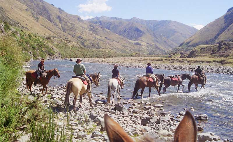 Exploring the country on horseback is a great experience, but proper preparation is essential to ensure a safe journey.