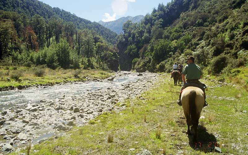 Is your horse up to a few days away in the back country?