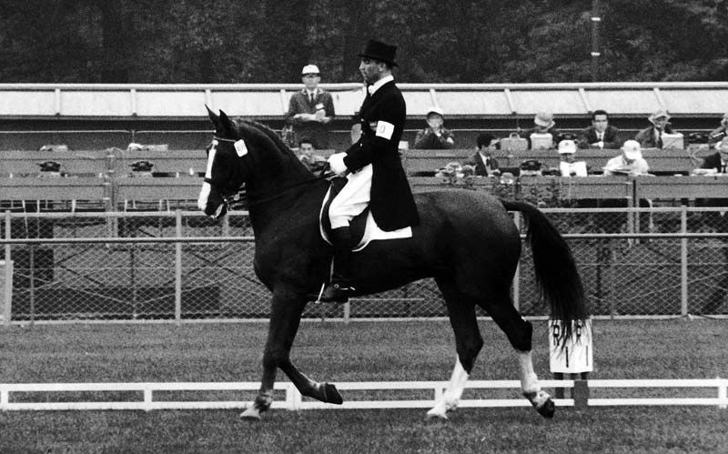 Reiner Klimke, riding Dux, helped Germany to team dressage gold at the Tokyo Olympic Games in 1964.