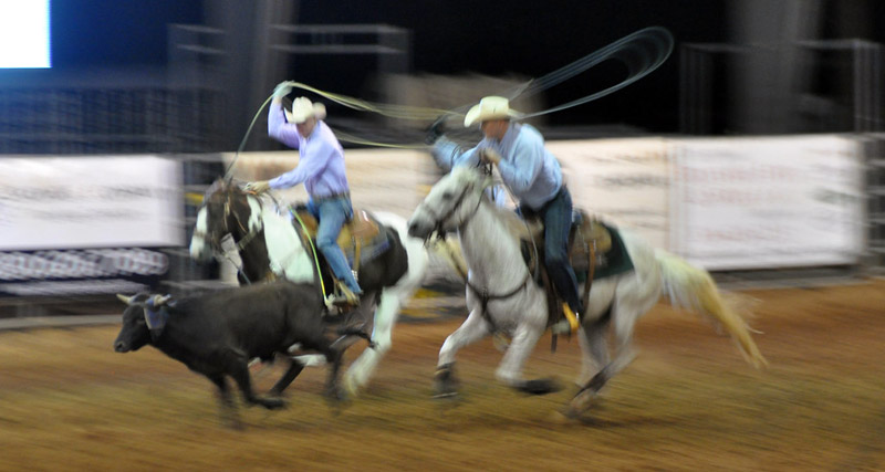 Animal advocacy groups are seeking a legal ban of the sport of rodeo in New Zealand.