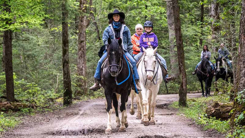 The government and industry rely on the survey data to help with decisions on building and maintaining trails, and agriculture and equine facilities.