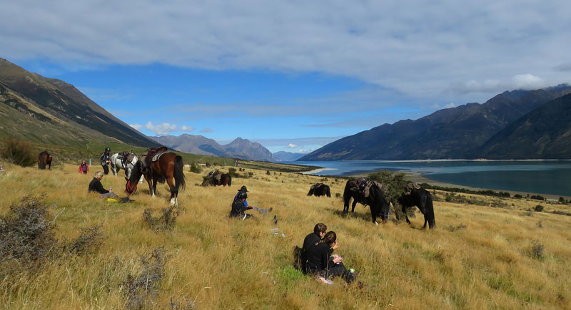 New Zealanders risk losing access unless the validity of equestrian recreation is recognised.
