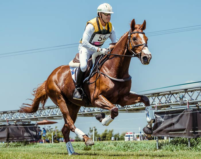 Andrew Hoy and Vassily de Lassos are in seventh spot going into the jumping phase of the eventing competition at Tokyo 2020.