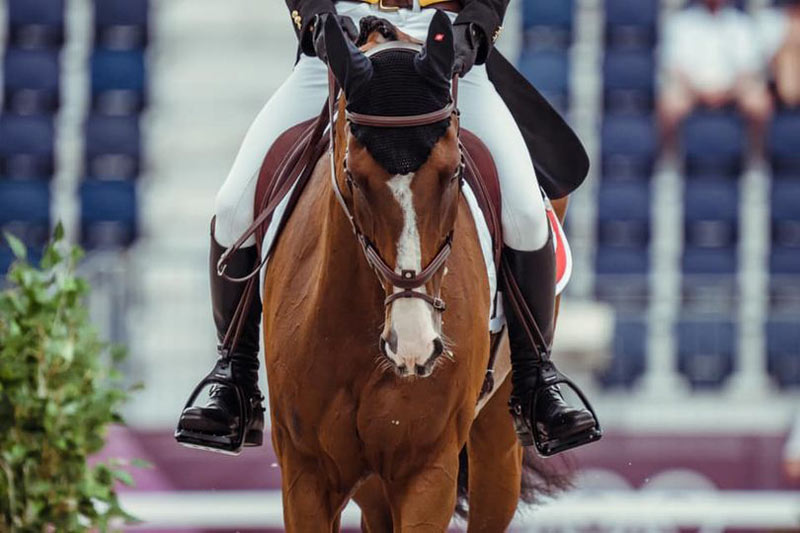 Jet Set pictured during the dressage phase of the eventing competition at the Tokyo 2020 Olympic Games.