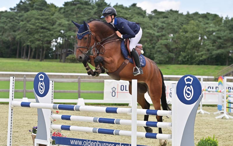 Commisario (Comme il Faut/Diamant de Semilly/Nekton) was the highest priced jumping horse, selling for €105,000 at the 95th Fall Elite Auction at the Oldenburg Horse Centre in Vechta.