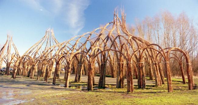 Naturbauten Aus Lebenden Geh 246 Lzen