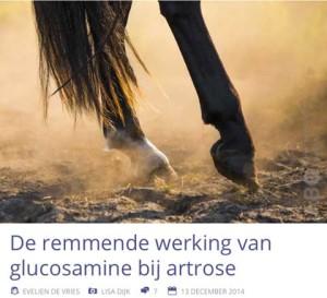 glucosamine tegen artrose bij paarden