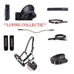 Collectie Lupine QHP