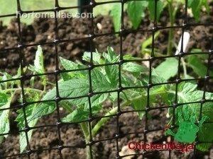 شِباك دواجن المالا يمكن أن تستخدم أيضاً في حماية صغار أشجار البساتين من الطيور والحيوانات البرية الأخرى الصغيرة.