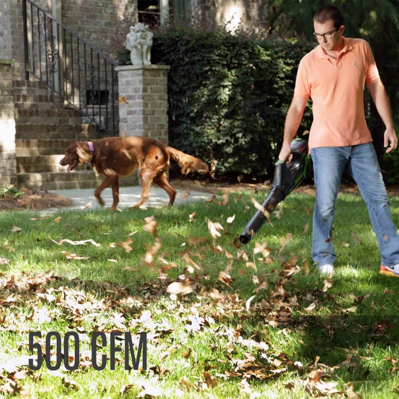 500FCM GreenWorks Leaf Blower
