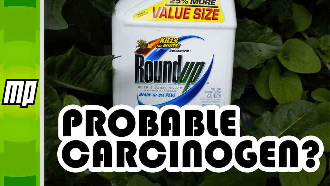 Is glyphosate carcinogenic?