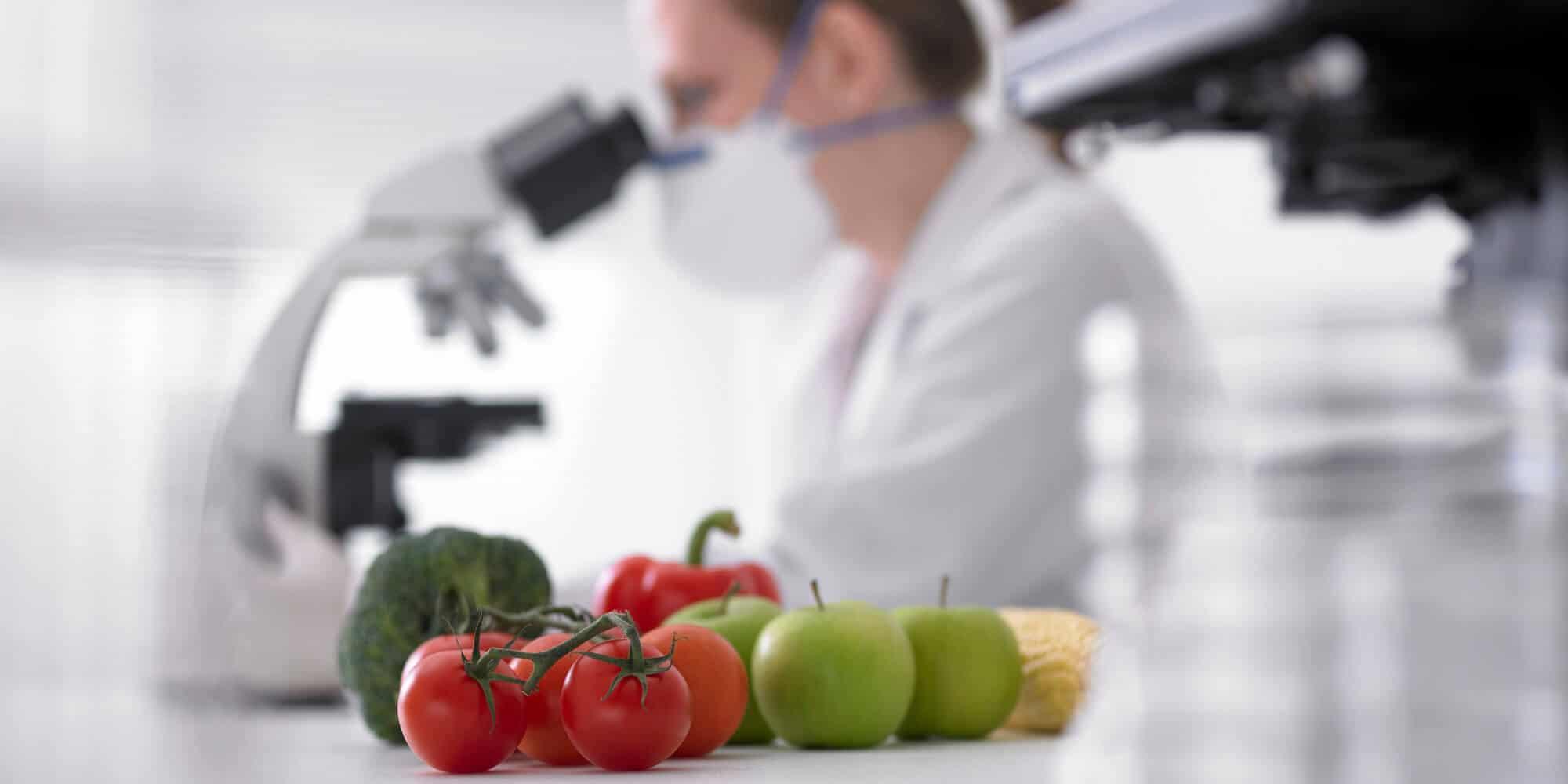 Are GMO food crops safe?