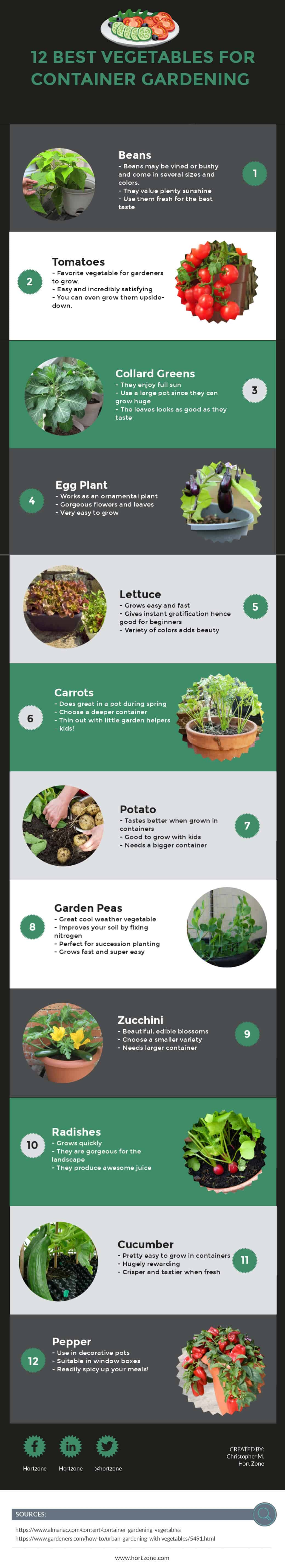 12 Best Vegetables for Container Gardening