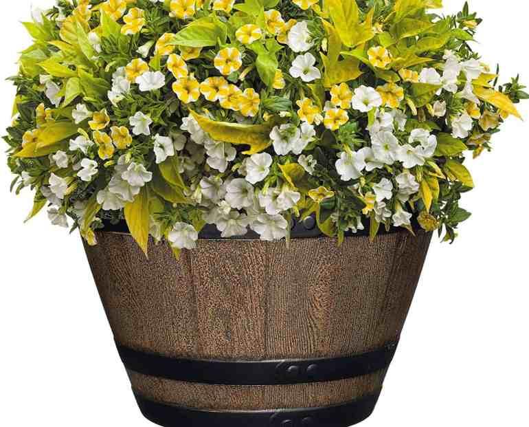 indoor pot planters