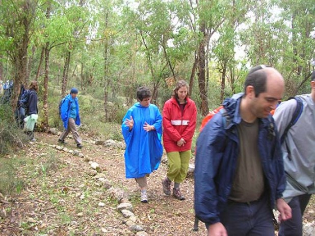 """משוטטי הושעיה ביער קק""""ל בתל שמשית - על אף הגשם!"""