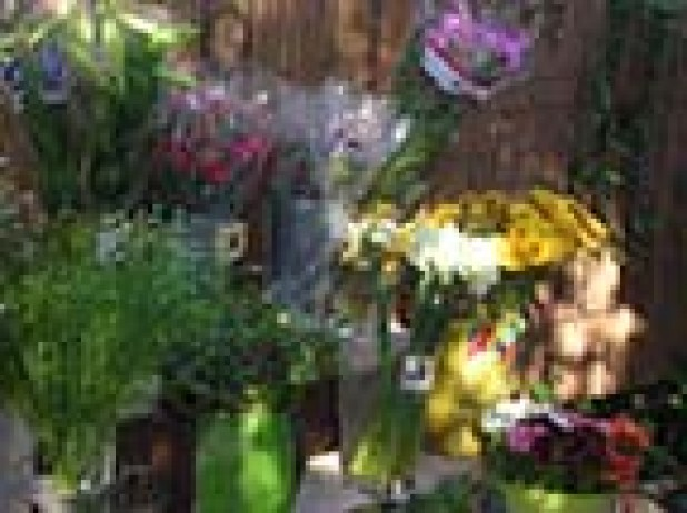 חינוך באמצעות פרחים