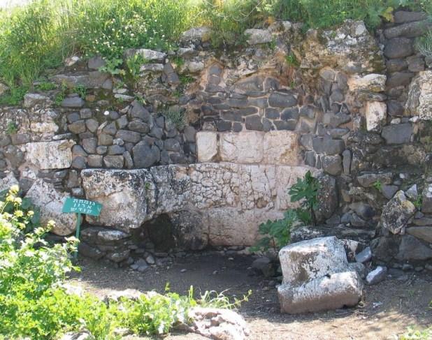גומחת ארון הקודש בקיר בדרומי צילום: Bukvoed