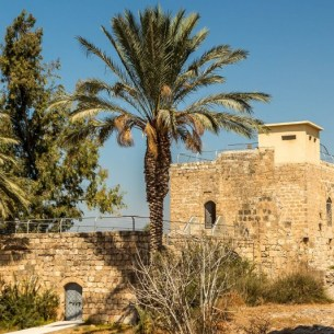 טחנת הקמת הצלבניתצילום: Liorca - במהלך המרד הערבי הגדול, בשנת 1936, נוספה על גג הטחנה עמדת בטון לתצפית ושמירה על מקורות המים ועל הכביש הראשי הסמוך.