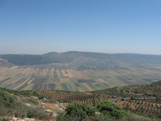Beit Netofa valley from Hararit צילום:Ori~