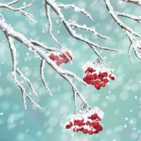 WinterFeatImage
