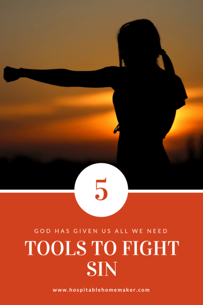5 Tools the Lord Gives Us to Fight Sin