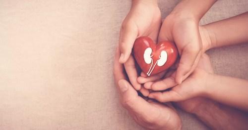 Dia mundial do rim: saúde para todos e em todo lugar