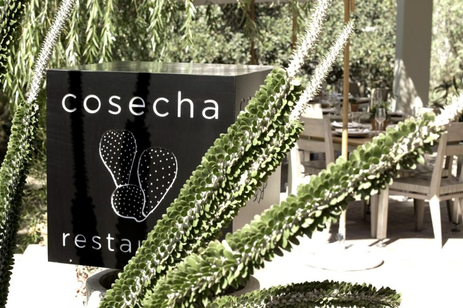 Image result for Cosecha Restaurant