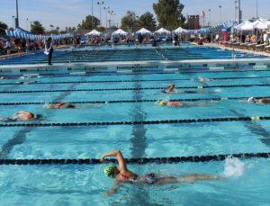 """Swim Meet """"Must Haves"""": Needs Versus Wants"""