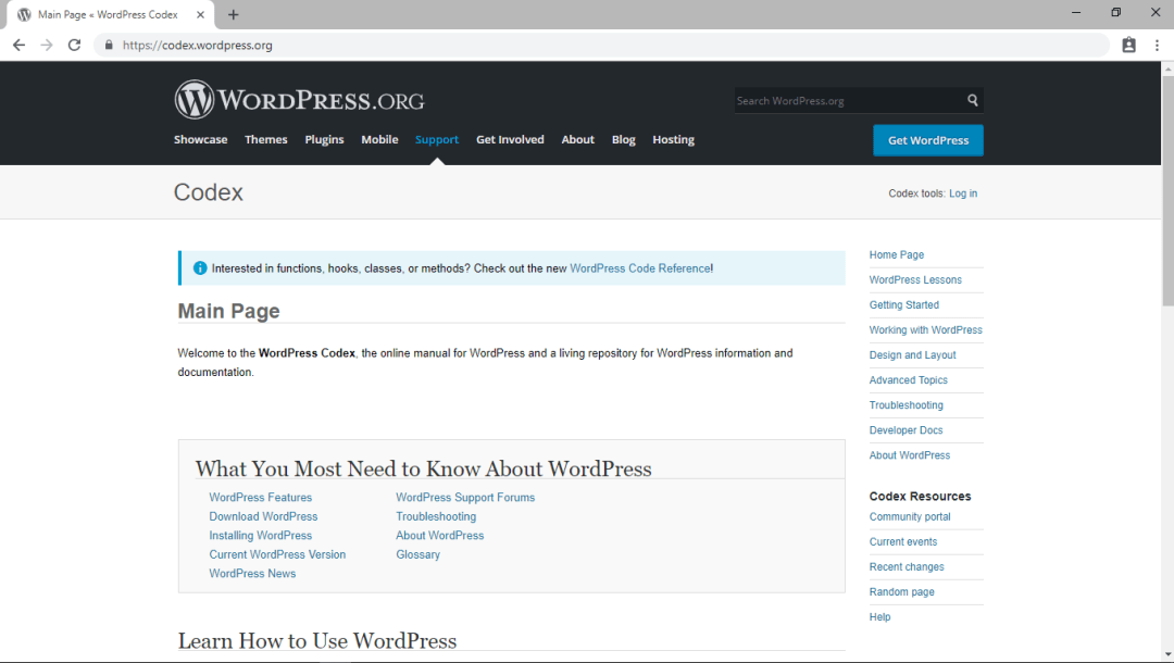 , 8 Great Resources to Learn WordPress for Beginners, 357 Mae Lai Services Page
