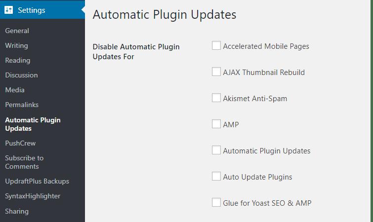 Auto Update WordPress Plugins Settings
