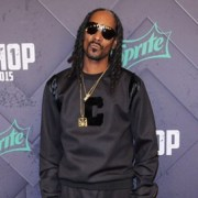 Dozens of People Injured at Snoop Dogg and Wiz Khalifa's Concert After Railing Collapses