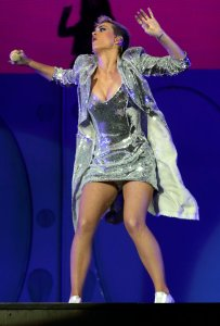 Katy Perry Legs Panties (12)