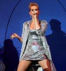 Katy Perry Legs Panties (15)