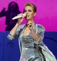 Katy Perry Legs Panties (31)