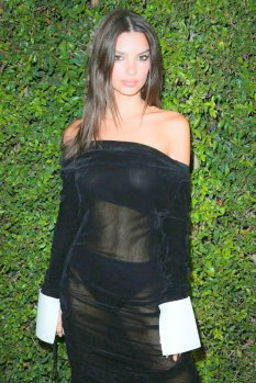 Emily Ratajkowski Sexy Sheer Dress