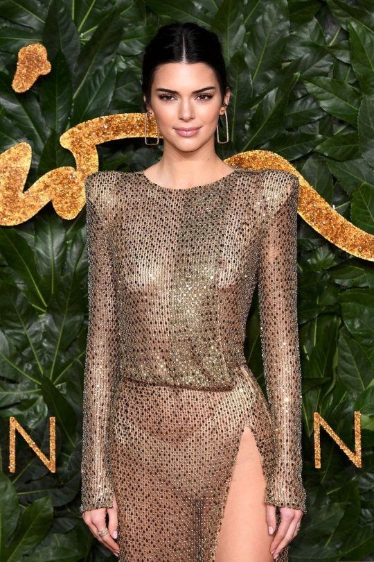 Kednall Jenner Sheer Dress