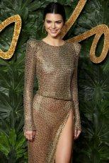 Kednall Jenner Sheer Dress