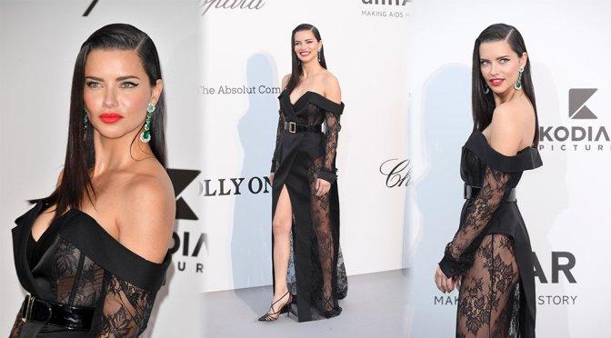 Adriana Lima – amfAR Gala 2019 in Cannes