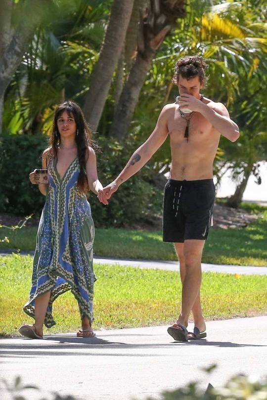 Camila Cabello Braless Breasts