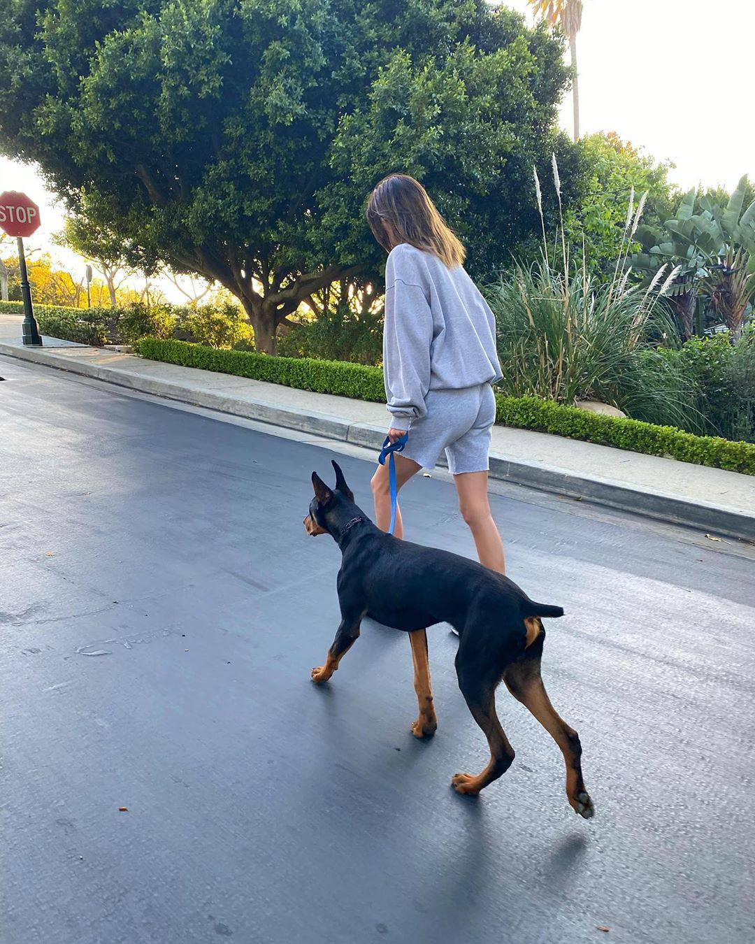 Kendall Jenner Out With Dog